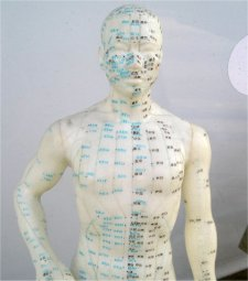 acupuncture-body-1564417