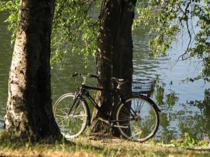 bike-in-copenhagen-1392303